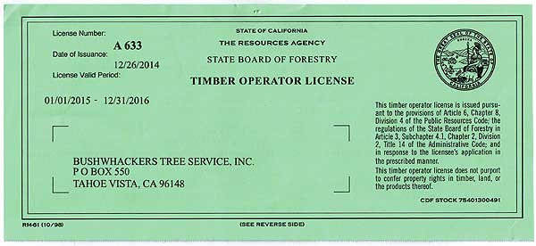 Timber Operator License