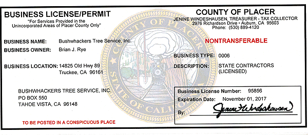 Truckee Placer License
