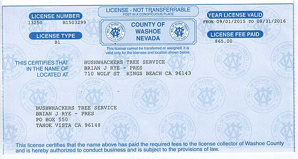 Washoe license